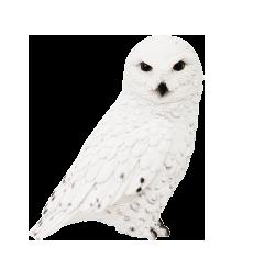 SNOWY OWL(シロフクロウ)