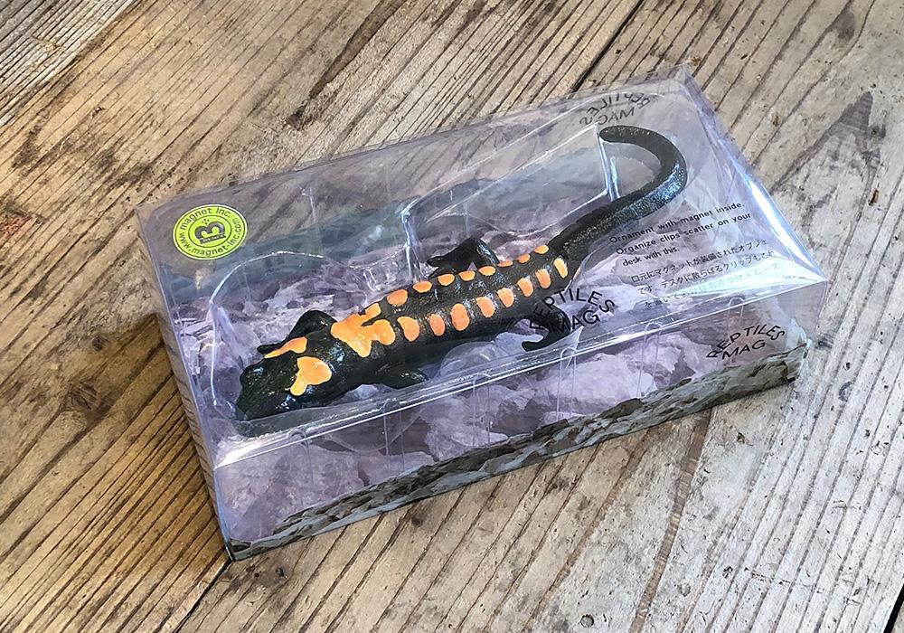 REPTILES MAG BARRED TIGER SALAMANDER(レプタイルズ マグ バード タイガー サラマンダー)のイメージ写真07