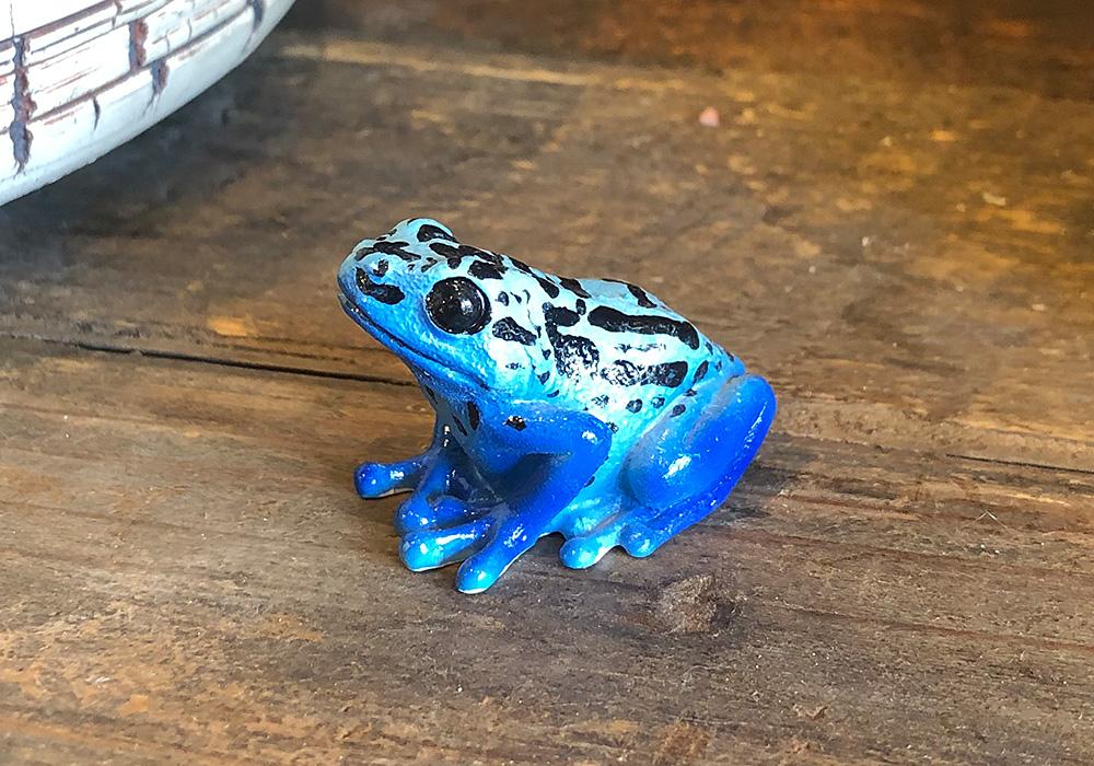 REPTILES MAG BLUE POISON DART FROG(レプタイルズ マグ ブルー ポイズンダートフロッグ)のイメージ写真03