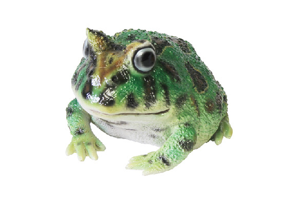 REPTILES MAG HORNED FROG(レプタイルズ マグ ホーンドフロッグ)GREENのイメージ写真