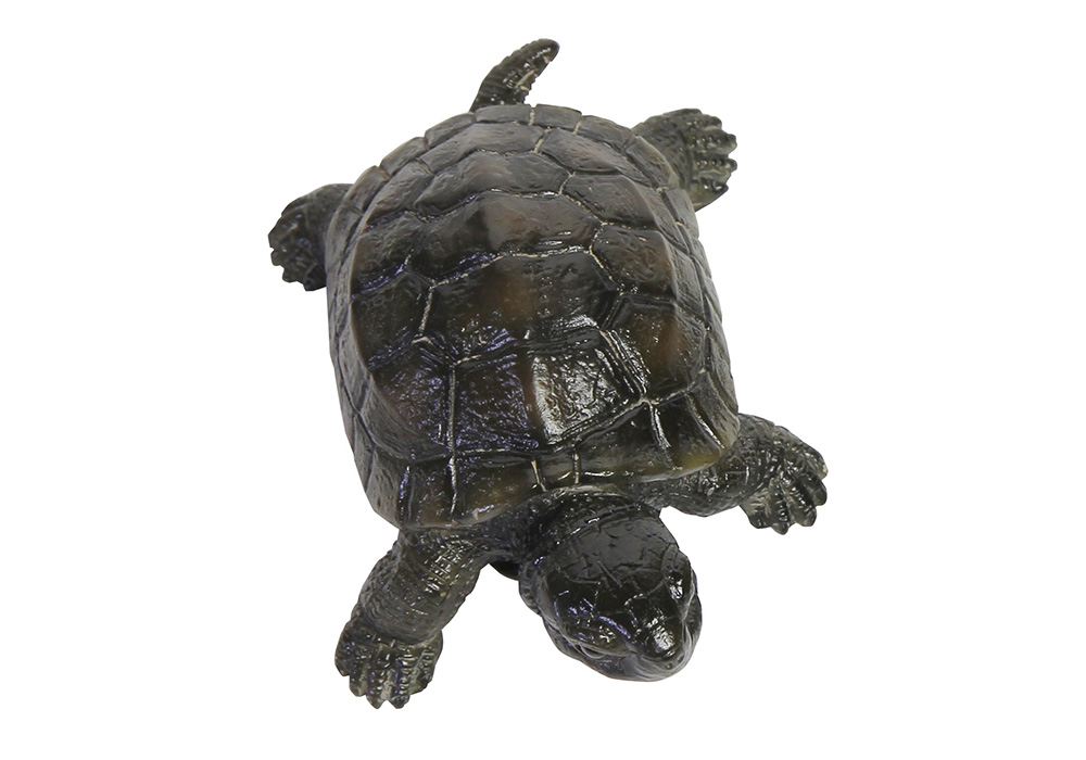 REPTILES MAG POND TURTLE(レプタイルズ マグ ポンド トータス)のイメージ写真03