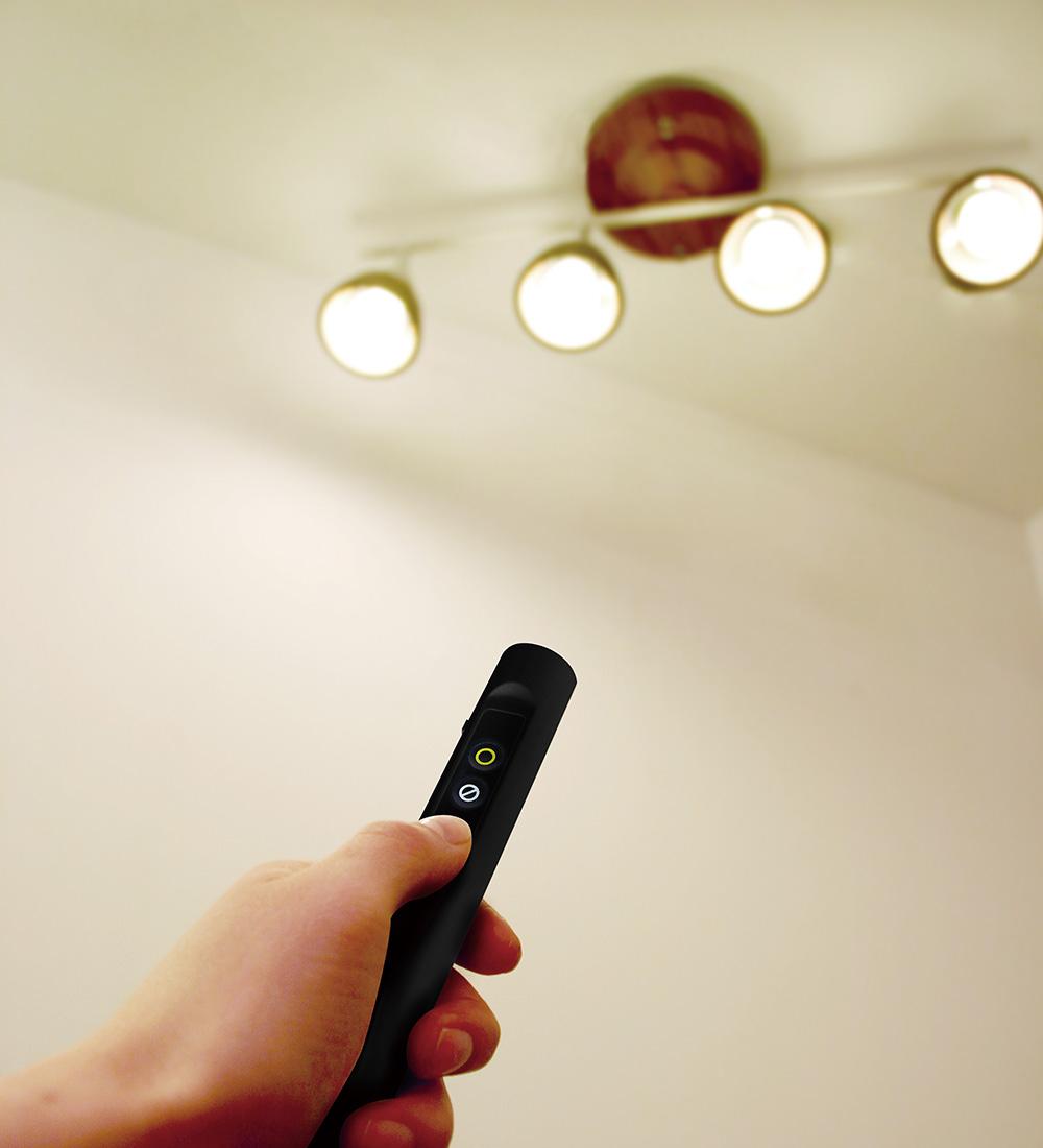 HARMONY GRANDE remote ceiling lamp(ハーモニー グランデ リモート シーリングランプ)のイメージ写真03
